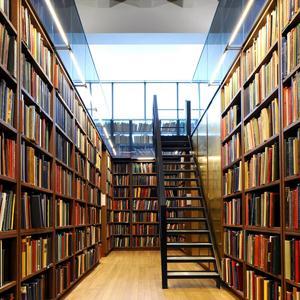 Библиотеки Ивангорода
