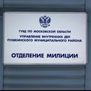 Отделения полиции Ивангорода
